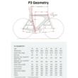 Cervelo P3 Shimano Ultegra TT/ Tri Bike