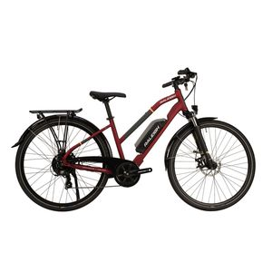 Raleigh Array E-Motion Lowstep Electric Bike